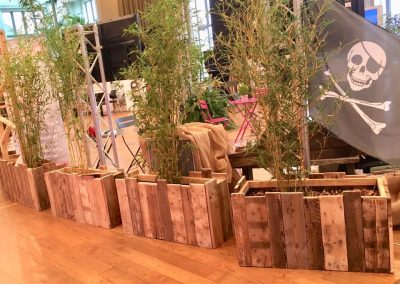 14èmes Assises nationales du centre ville au Centre de Congrès de Pau  - bacs à fleurs